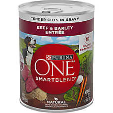 Purina ONE (R) Smart Blend (R) Tender Cuts in Gravy Wet Dog Food