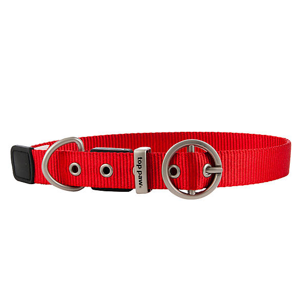 Sunbeam Dog Collar