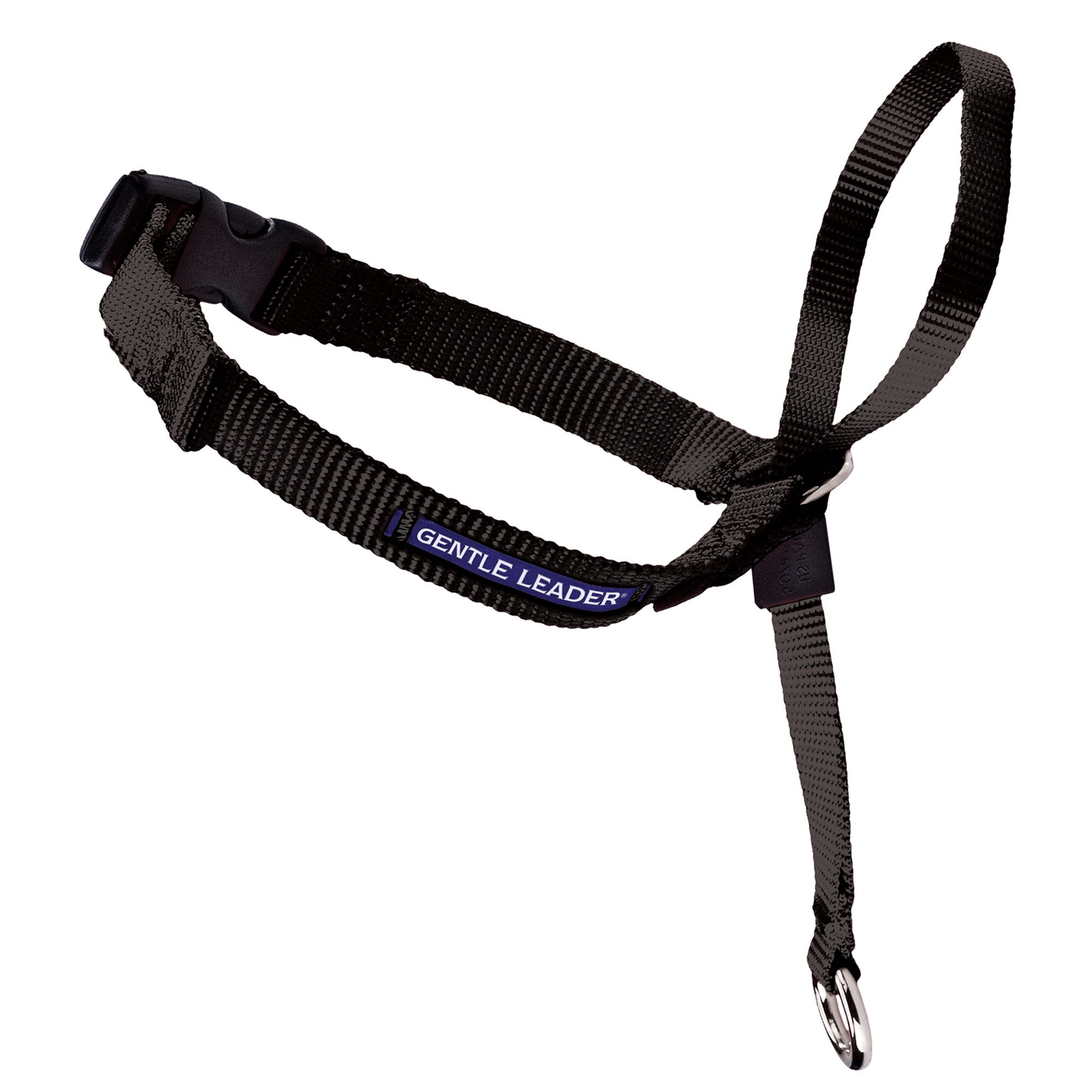 Training Collars, Leashes & Harnesses