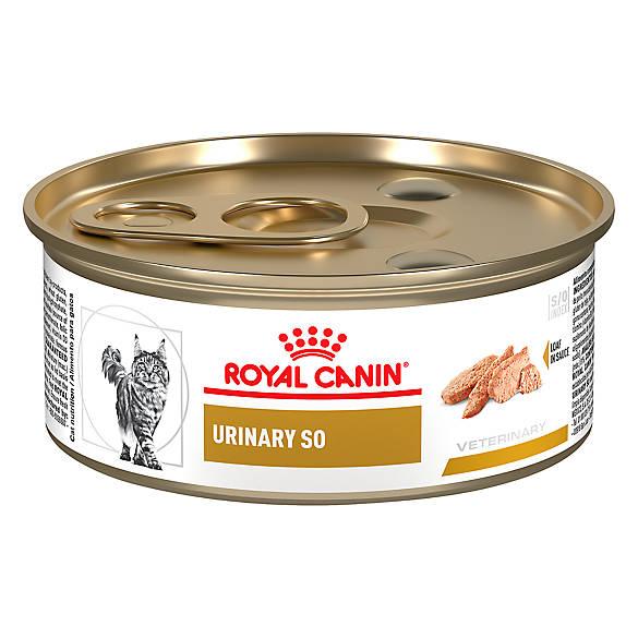 Royal Canin Urinary So Cat Food Petsmart
