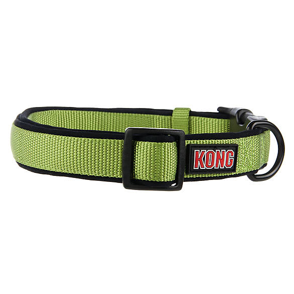 kong dog collars and leashes