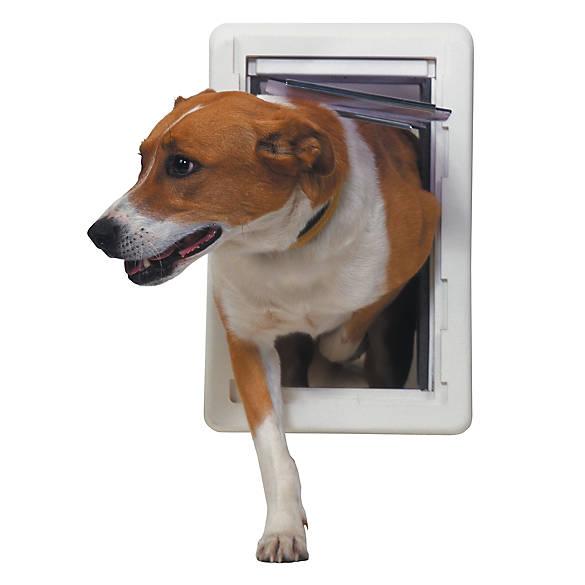 Perfect Pet All Weather Pet Door Dog Dog Doors Gates Petsmart