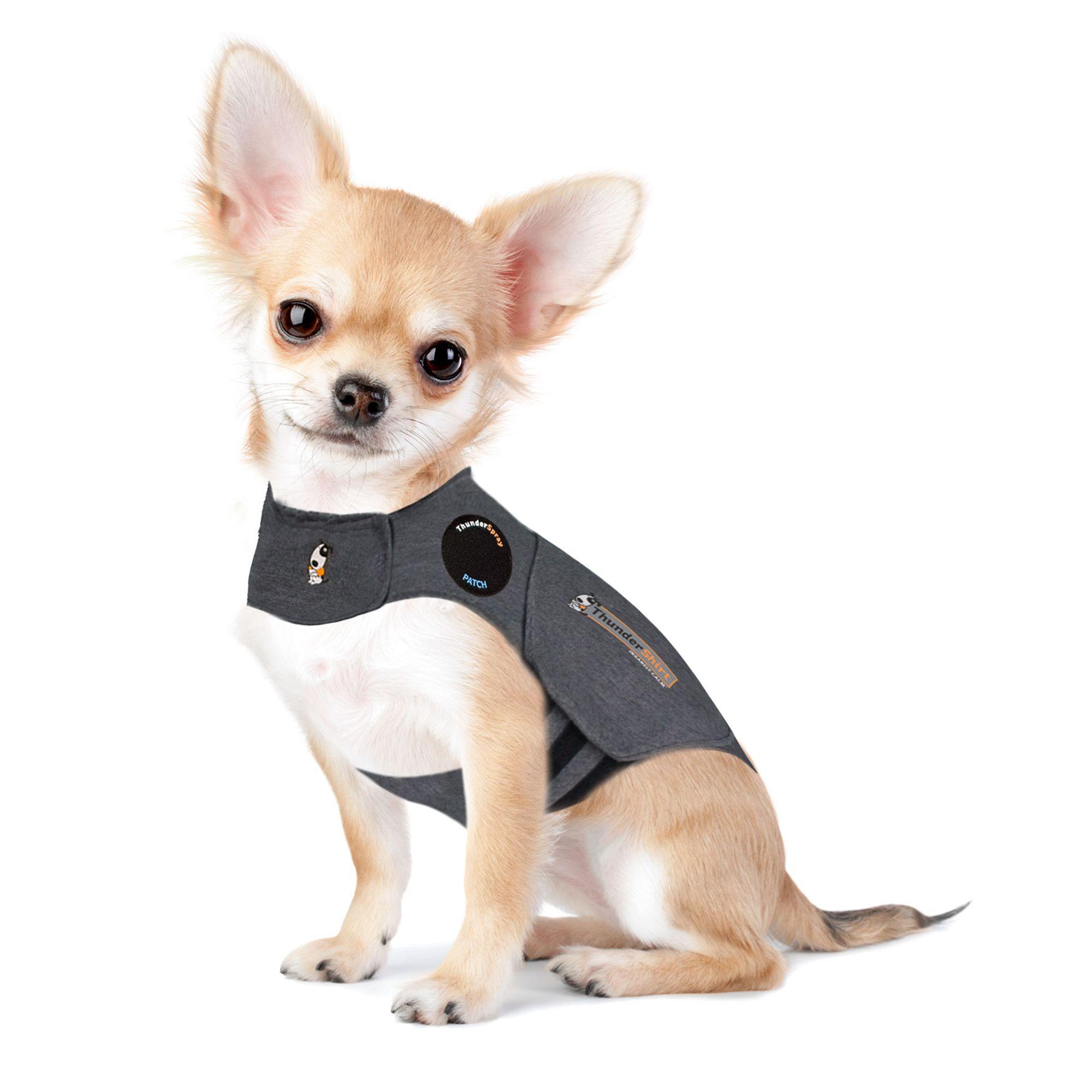 Thundershirt Insanely Calm Trade Dog Anxiety Shirt Dog Stress Anxiety Petsmart
