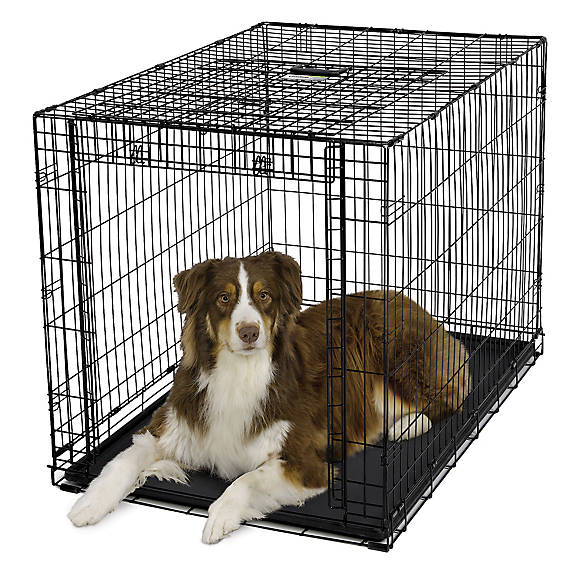 MidWest® Ovation Dog Crate | dog Carriers & Crates | PetSmart