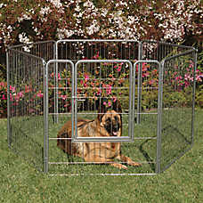 Precision Pet Products® Courtyard Kennel
