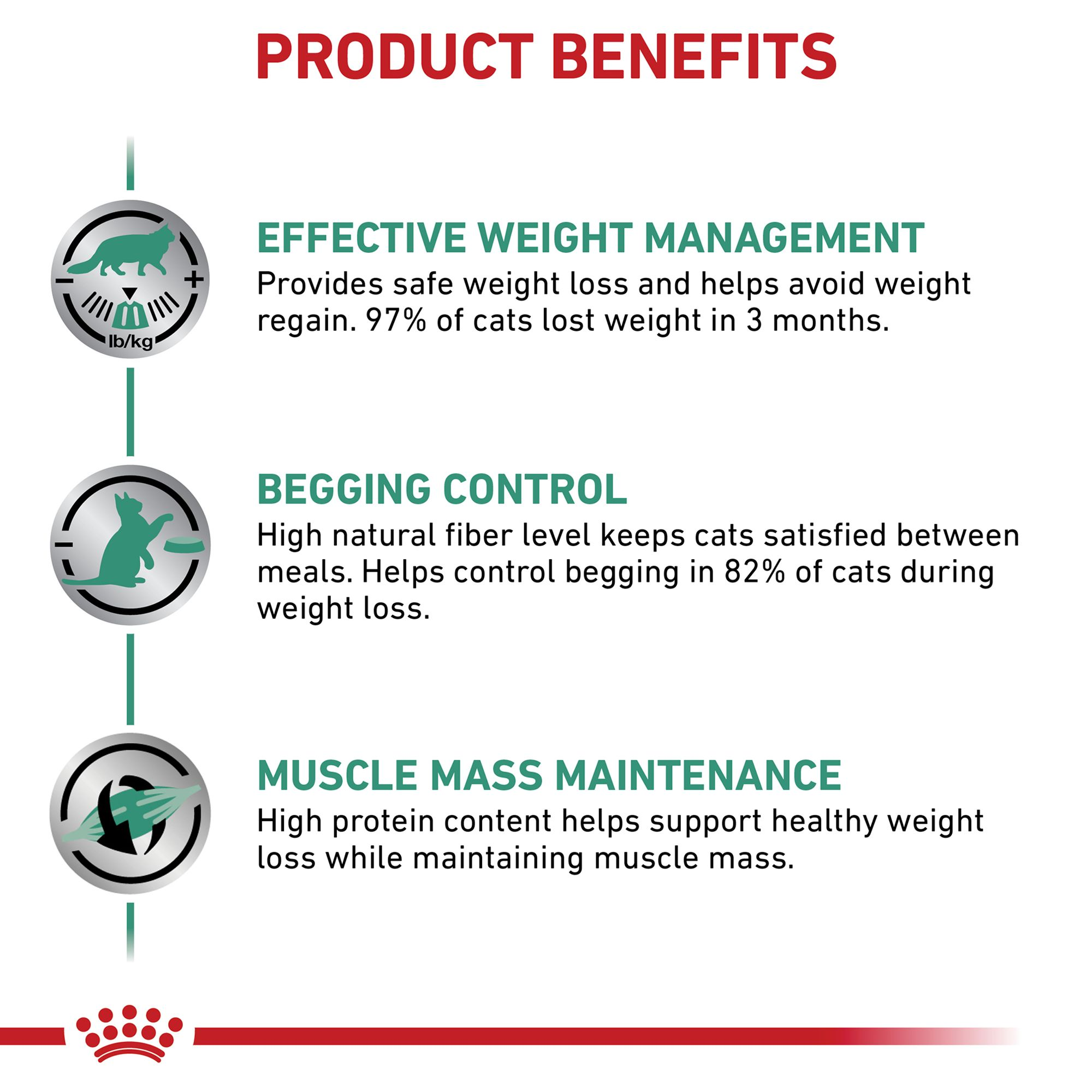 safe weight loss rate for cats