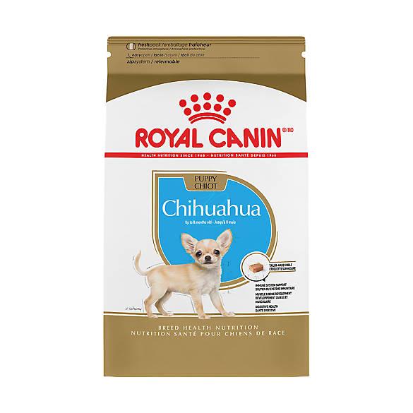 Royal Canine Cat Food Petsmart