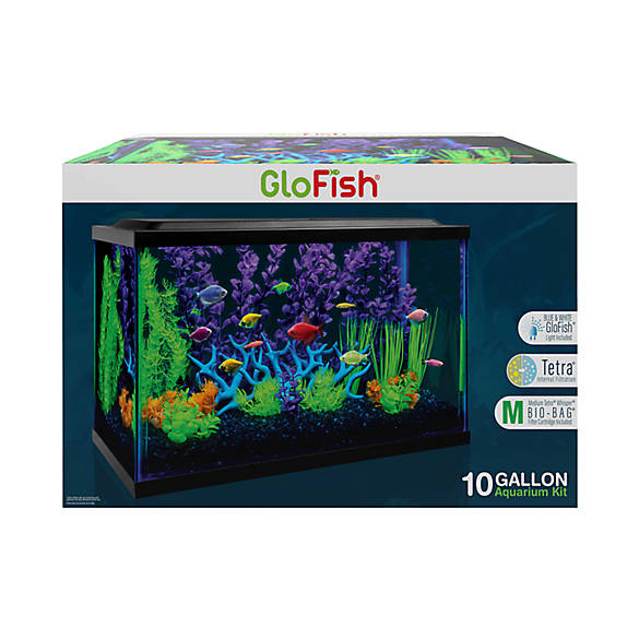 glofish 10 gallon aquarium kit fish starter kits petsmart