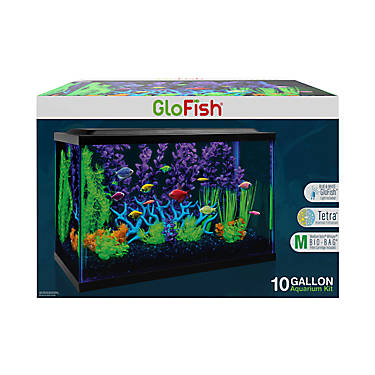 GloFish® 10 Gallon Aquarium Kit | fish Starter Kits | PetSmart