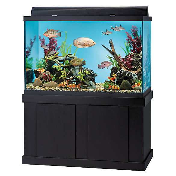 Top fin 150 gallon aquarium ensemble fish aquariums for Petsmart fish filters