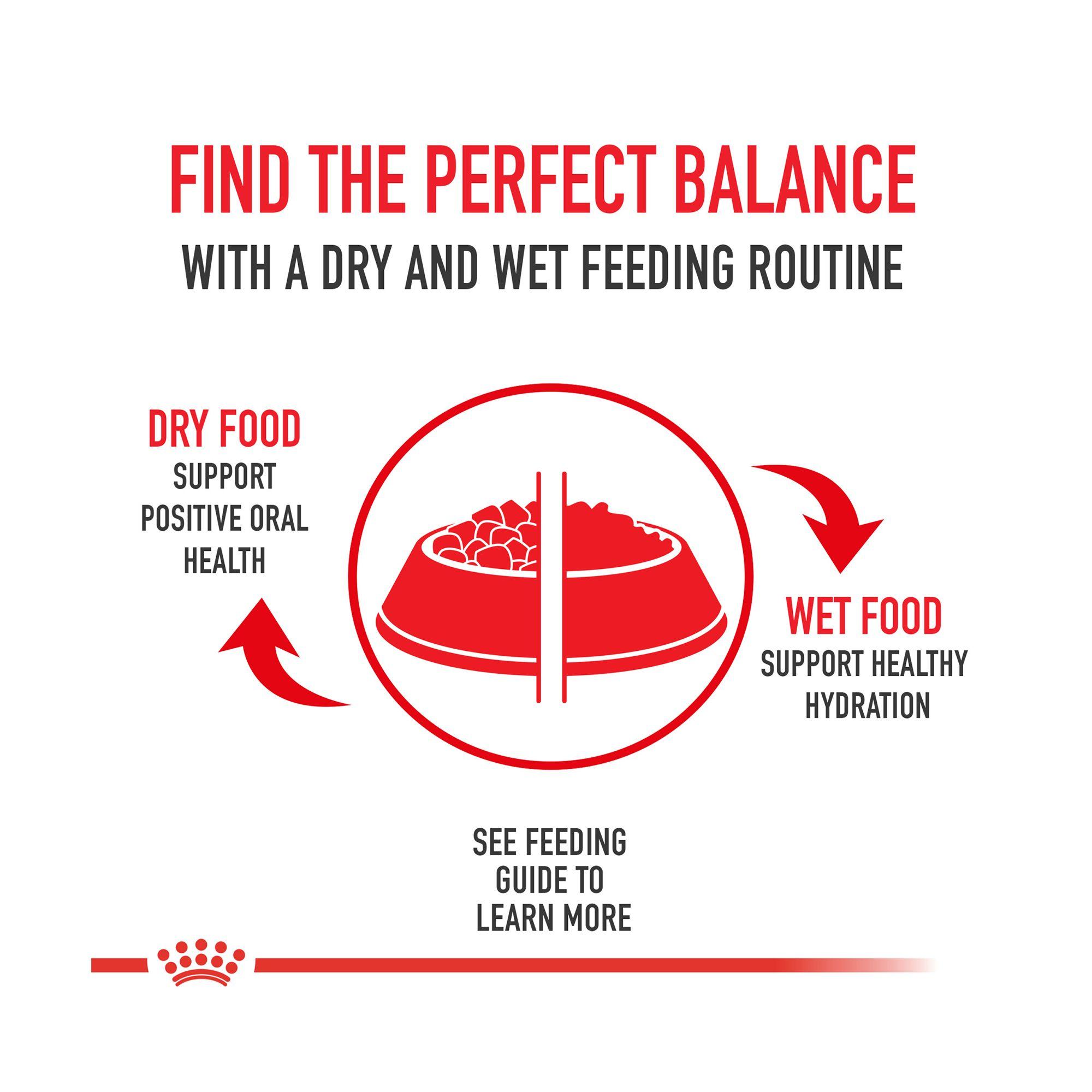 Royal Canin Breed Health Nutrition Trade Shih Tzu Puppy Food