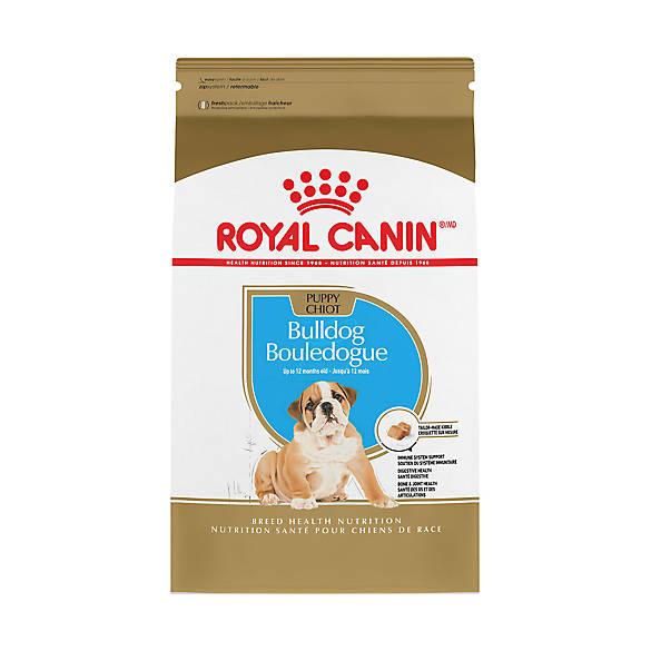 Royal Canin Gastrointestinal Cat Food Petsmart