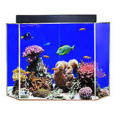 Clear-For-Life 50 Gallon Pentagon Aquarium