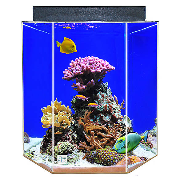 Clear for life 55 gallon hexagon aquarium fish aquariums for Petsmart fish aquariums