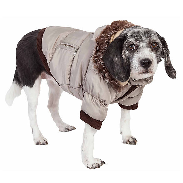 Winter Coats For Dogs Large