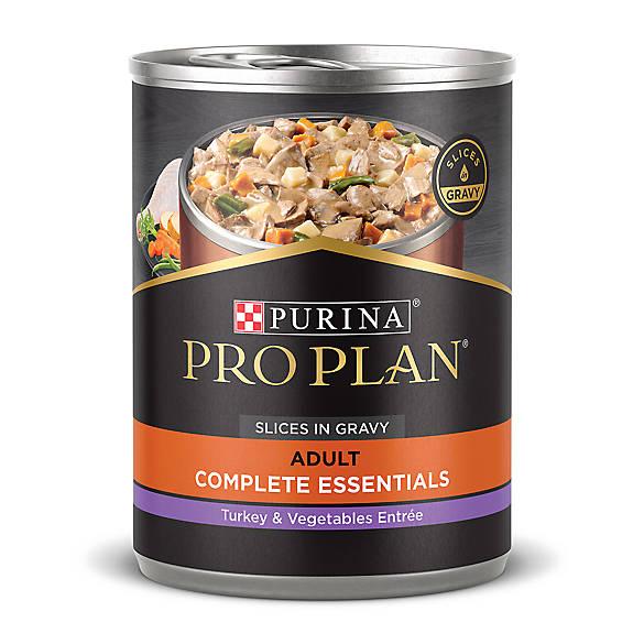 Organic dog food business plan