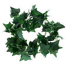 All Living Things® English Ivy Reptile Terrarium Vine