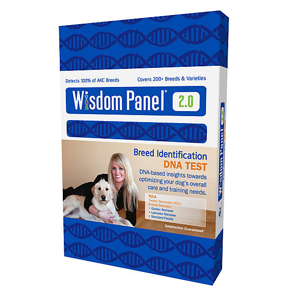 Wisdom panel breed identification dog dna test dog for Fish genetic testing