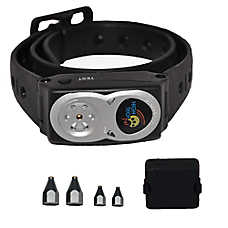 High Tech RC-8 Radio Dog Containment Collar