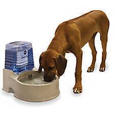 K&H CleanFlow™ Reservoir Pet Bowl