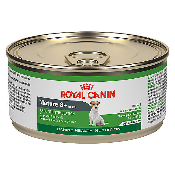 Where To Buy Royal Canin Canned Dog Food