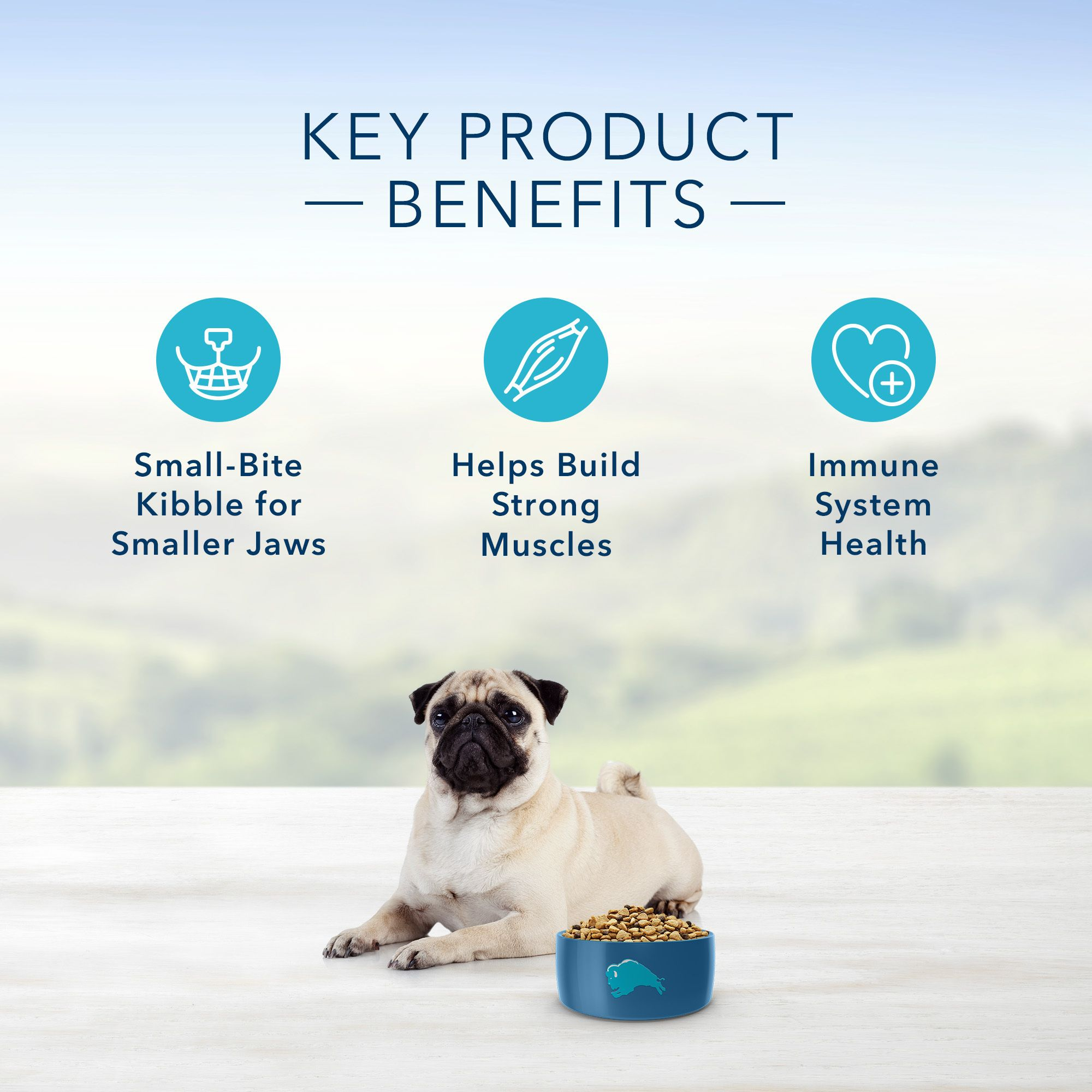 BLUE Life Protection Formula Adult Small Bite Chicken and Brown Rice  Dry Dog