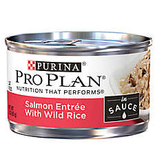Purina® Pro Plan® Adult Cat Food - Salmon & Wild Rice