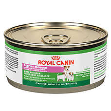 Royal Canin® Canine Health Nutrition Starter Mousse Dog Food