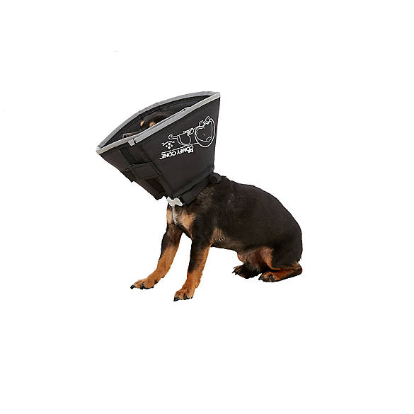 All Four Paws Comfy Cone Dog Collar
