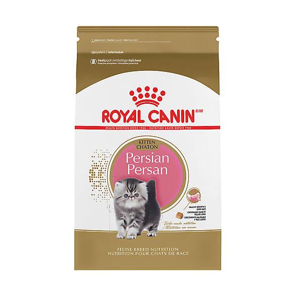 royal canin feline breed nutrition persian kitten food. Black Bedroom Furniture Sets. Home Design Ideas