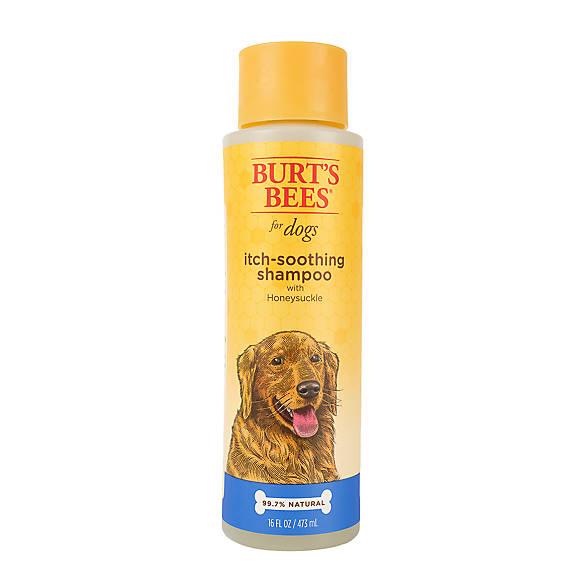 Burt S Bees Itch Soothing Dog Shampoo Size  Fl Oz