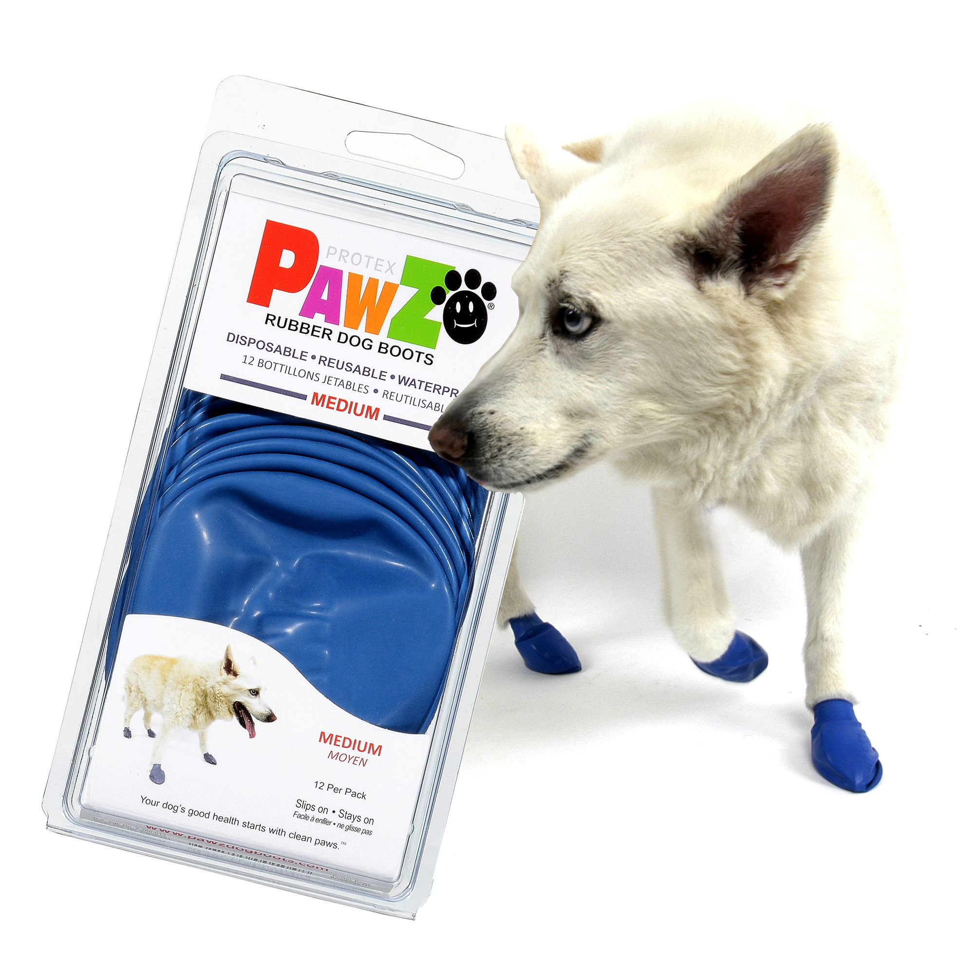 PROTECT YOUR DOG'S PAWS FROM HOT SURFACES | todocat.com