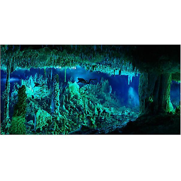 National geographic 3 d lenticular cave aquarium for Petsmart fish decor