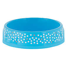 Whisker City® Polka Dot Cat Bowl (COLOR VARIES)