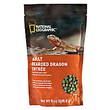 National Geographic™ Adult Bearded Dragon Entrée