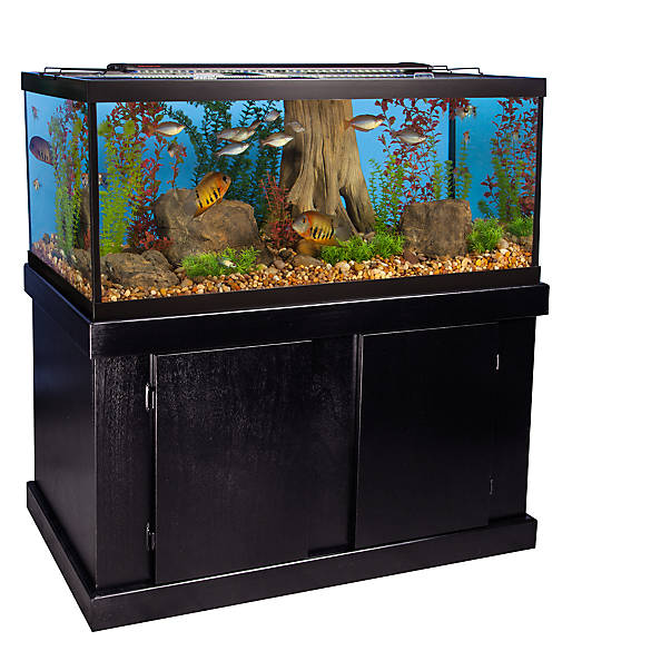 Marineland 75 gallon aquarium majesty ensemble fish for 75 gallon fish tank dimensions