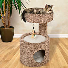 Whisker City® Cat Condo (COLOR VARIES)