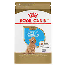 Royal Canin® Breed Health Nutrition™ Poodle Puppy Food