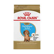 Royal Canin® Breed Health Nutrition™ Dachshund Puppy Food