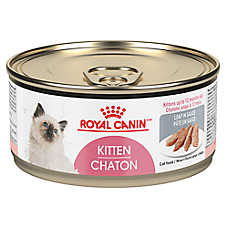 Royal Canin® Instinctive Kitten Food