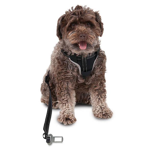 Petmate 174 Ultimate Travel Dog Harness Amp Leash Dog