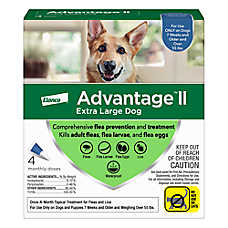 Dog Flea Prevention And Treatment Petsmart