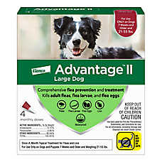 Advantage® II 21-55 lbs Dog Flea & Lice Treatment
