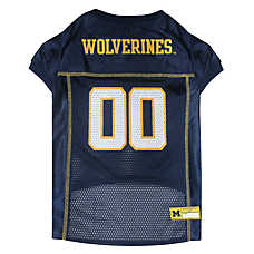 University of Michigan Wolverine NCAA Jersey