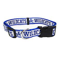 University of Kentucky Wildcat NCAA Collar