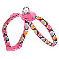 Top Paw® Groovy Dot Figure Eight Adjustable Harness