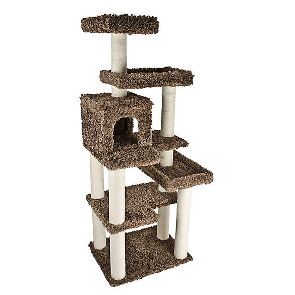 Pet Smart Cat Tree Supplies Online Finally, a cat tree that looks great in your home! This beautiful modern cat tree is a lovely addition to your home, but is also a functional space for your cat with areas for scratching, resting, hiding and exercising.