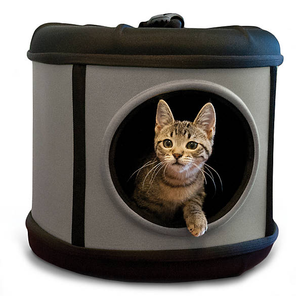 Choosing The Best Cat Travel Carrier Petsmart