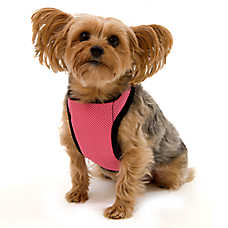 Kumfy Tailz™ Warming/Cooling Dog Harness