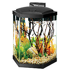 Aqueon 20 gallon hex aquarium starter kit fish starter for Hexagon fish tank with stand